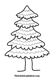 pine tree coloring pages trendy pine tree coloring pages with