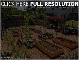 backyards splendid backyard vegetable garden design ideas pin
