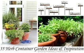 Herb Garden Layout Small Herb Garden Layout Herb Container Gardens Small Herb Garden