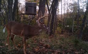 plastic shooting houses plastic deer stands plastic deer blinds 4x6 combo gun bow blind