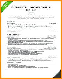 exle of resume summary resume summary for students skywaitress co