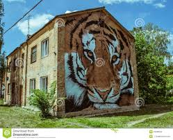 street art on the old building with a picture of a tiger muzzle in street art on the old building with a picture of a tiger muzzle in the wall