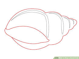 how to draw a hermit crab 8 steps with pictures wikihow