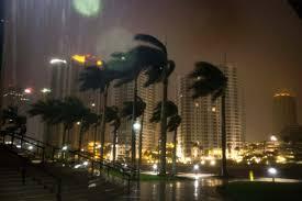 When Do They Light The Tree In Nyc Hurricane Irma U0027a Low Howl U0027 U0027tearing Through The Trees U0027 U0027like