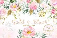 Peach Flowers Peach Flowers Photos Graphics Fonts Themes Templates