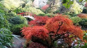 Botanical Gardens Seattle Kubota Garden In Seattle