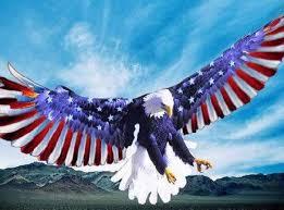 America Eagle Meme - american eagle flag wings cross stitch pattern l k lone wolf