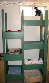 Upcycled Drawer Pet Bed Diy by Repurposed Old Dresser Drawers Into A Cat Tree For The Foster