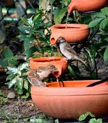 bird bath water fountain with fish bird bath pinterest bird bird bath water fountain with fish