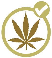 Pot Flag Marijuana Party Canada Wikipedia