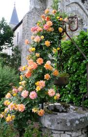garden decor contempo ideas for country french garden decoration