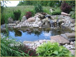 backyard ponds home design ideas
