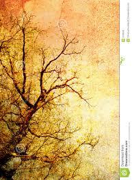 vintage tree royalty free stock image image 3190506