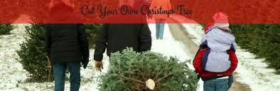 christmas tree farms in the dallas area