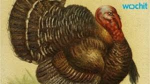 which state consumes the most turkey on thanksgiving charity
