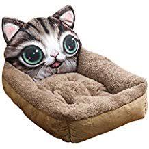 divanetti per gatti it divanetti per cani