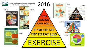 usda unveils new food pyramid designed to aid weight loss