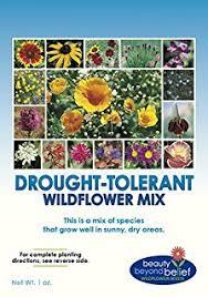 seed packets bulk wildflower seeds bulk 8 bonus gardening ebooks