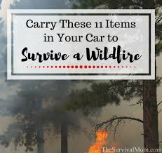 Wildfire Car For Sale by Carry These 11 Items In Your Car To Survive A Wildfire Survival Mom