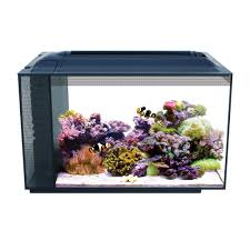 halloween fish tank background fish tanks saltwater u0026 freshwater aquariums u0026 supplies petco