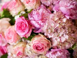 wedding flowers pictures the most beautiful ideas for your wedding bouquet prospect flowers