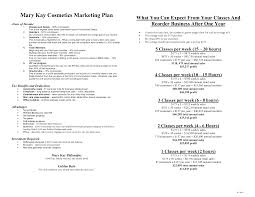 Sales Call Planning Worksheet Mary Kay Business Plan Mary Kay Cosmetics Marketing Plan What