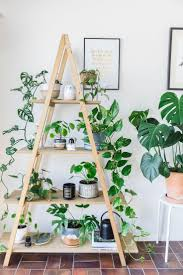 best 25 plant shelves ideas only on pinterest bathroom ladder