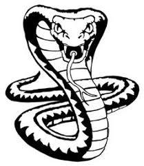 cobra snakes tattoos gallery and of cobra tattoos