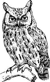 100 tribal owl tattoo designs tribal owl tattoo print real