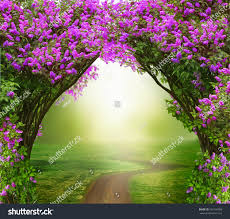 fantasy background magic forest roadbeautiful spring stock photo