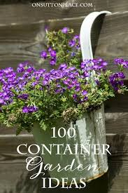 2125 best container gardens images on pinterest pots plants and