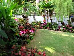 Florida Landscaping Ideas For Front Of House by Pearl U0027s Bromeliad Garden Singapore Tropical Garden Style