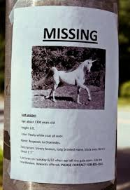 Missing Cat Meme - 14 lost pet posters that are kind of the best collegehumor post