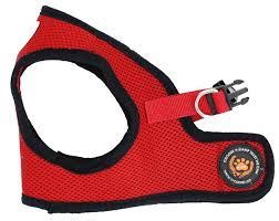 Comfortable Strap On Harness 2510 Best Cat Collar Harness And Leash Images On Pinterest Cat