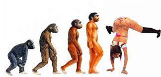 Twerk Meme - evolution twerk twerking know your meme