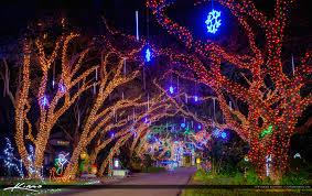 palm harbor christmas lights snug harbor christmas lights 2016 palm beach county florida