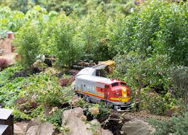 volunteering with a g scale railroad phipps conservatory the
