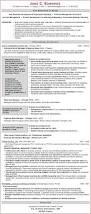 Sample Non Profit Resume by Sample Résumé Vp Sales Nonprofit Resume Writers
