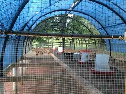 Backyard Quail Pens And Quail Housing by New Pvc Flight Pen For Quail Pirate4x4 Com 4x4 And Off Road Forum