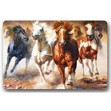 Outdoor Rugs For Horses Rugs