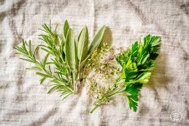 thanksgiving herbs parsely rosemary thyme