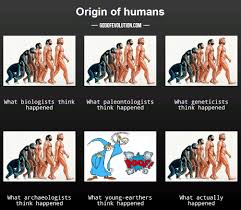 Meme Origins - a meme about human evolution god of evolution