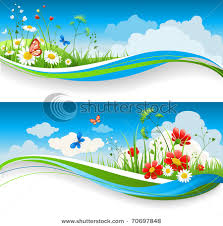 pictures of flower gardens in the spring or summer with