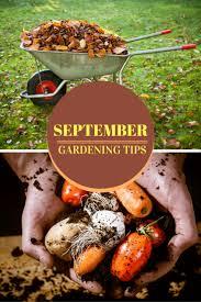 september gardening tips bestgardentips com