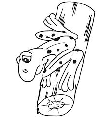 frog coloring frog log