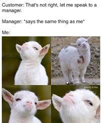 Customer Service Meme - customer service meme tumblr