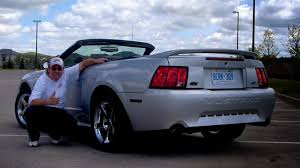 ford mustang gt horsepower by year 2000 ford mustang gt