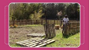 Build Vegetable Garden Fence by How To Build A Pallet Fence U0026 Garden Update Youtube