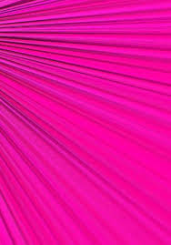 hot pink colour 111 best color hot pink images on pinterest pink sugar pretty
