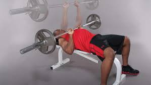 Bench Press For Beginners How To Develop A Periodized Workout Plan Stack